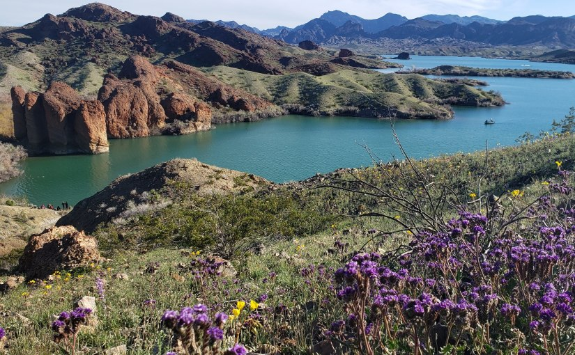 Hiking & Mountain Biking SARA Park – Lake Havasu, AZ